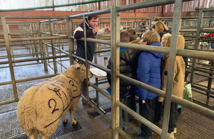 Louth Young Farmers hold a successful day of school workshops