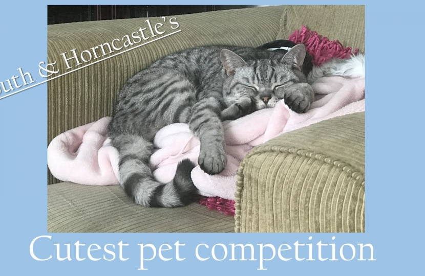 Victoria Atkins launches competition to find Louth & Horncastle's cutest pet